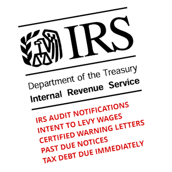 Image result for irs collection notice