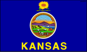 Tax Resolution Kansas & Tax Relief Wichita & Tax Help Topeka, KS