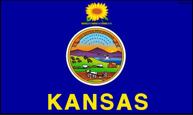Tax Resolution Kansas & Tax Relief Wichita & Tax Help Topeka, KS